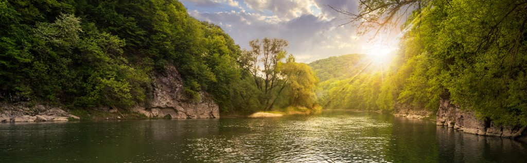 mountain river with stones on the shore in the forest near the mountain slope in sunset light